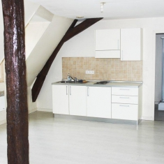 Bourges centre bel appartement duplex